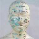 110511212459AcupunctureFusion.jpg