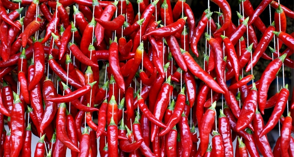 Pictures of asian peppers