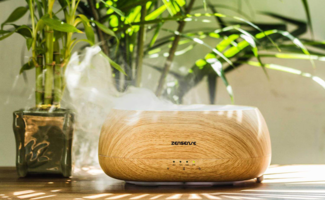 ZenSense- the best non-toxic home scenter using Cloud Mist technology.